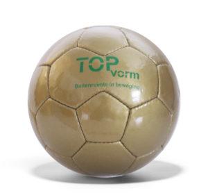 TopVorm